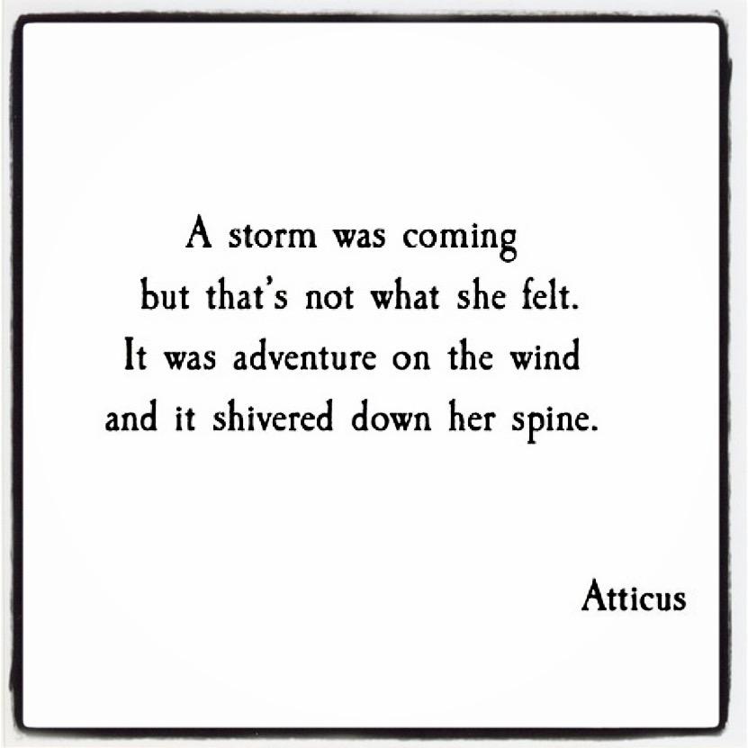 Adventure on thewind…